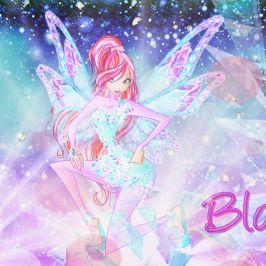 Bloom Sparks