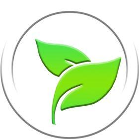 Alphatox Premium Fitness Teas
