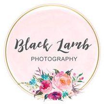 Black Lamb Photography