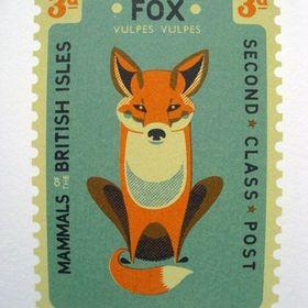 Fox Foxoš