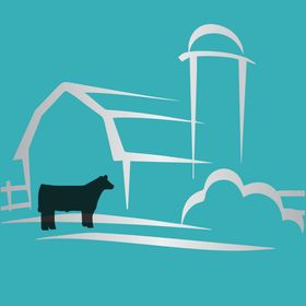 Silver Barn Cattle   Show Cattle Help for your Beef Project