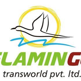 Flamingo Transworld Pvt. Ltd.