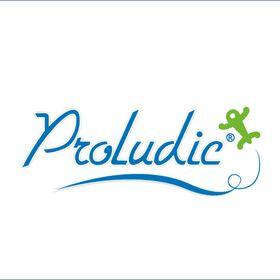 Proludic Playgrounds