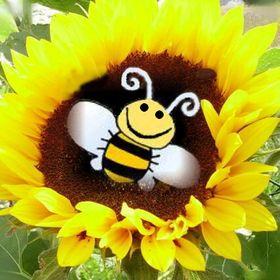 Lenka včelka