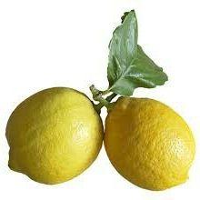 Coucou Lemon