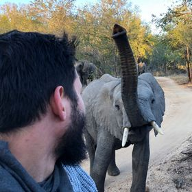 Safari.com | tour operator