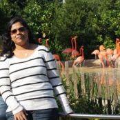 Prasanna Basireddy