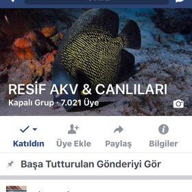 Erkan Aşcıoğlu