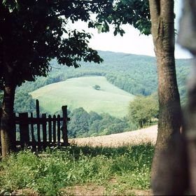 Polonez Köy