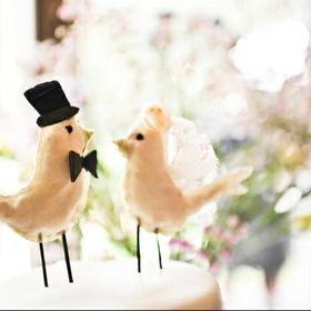 Wedding Photography A H
