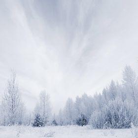 Winter_randomness❄️❄️☃