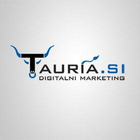 Izdelava spletnih strani - Tauria.si