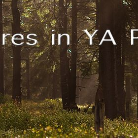 Adventures in YA Publishing
