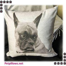 Pet Pillows