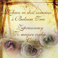 Balsam Tree Anka Alexa