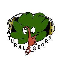 NaturalSecret Lmt