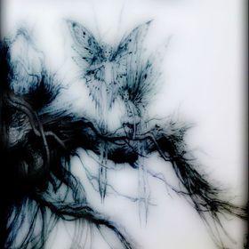 ˚✧₊ raven ⁺˳✧༚