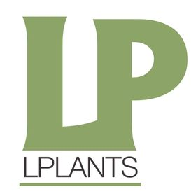 Lplants подбор растений