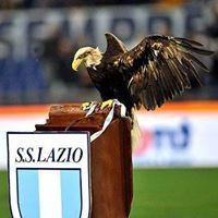 Lazio Nino