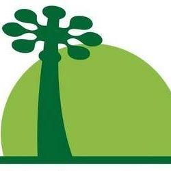 Les 38 meilleures images de Biologiquement.com | Corossol, Carence en vitamine d, Curcuma bio