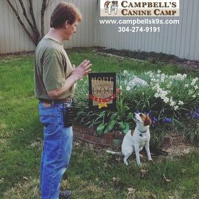 Campbell's Canine Camp