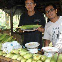 Bambang Tri Wardoyo