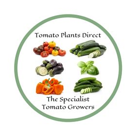 Vegetable And Tomato Plants Direct