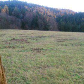 Terezie Garláthyová