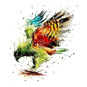 Wandering Parrot