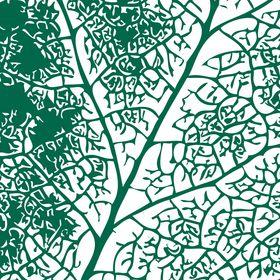 Pflanzplan Gartengestaltung & Terrassengestaltung