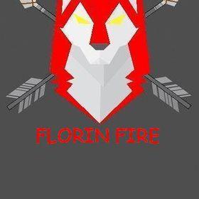 FLORIN FIRE