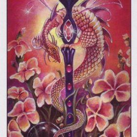 Tarot By Cecelia