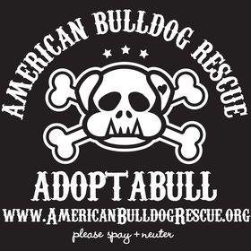 American Bulldog Rescue Organization