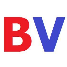 JL Pins BV