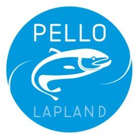 Pello in Lapland