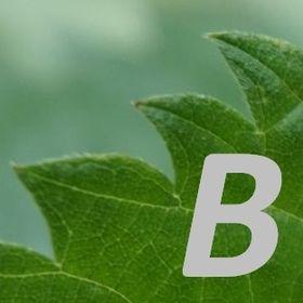 biodika