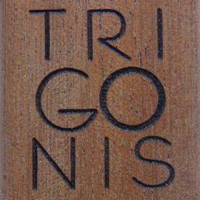 Ioannis Trigonis