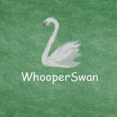WhooperSwan