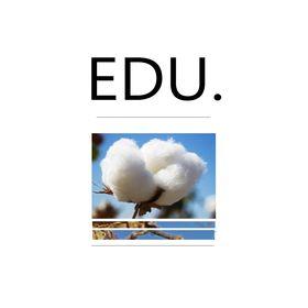 Edu Ideas