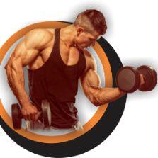 Musculação Ectomorfo