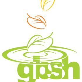 GBSH Consult