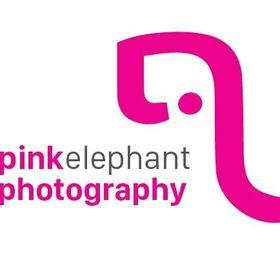 Pink Elephant Photography