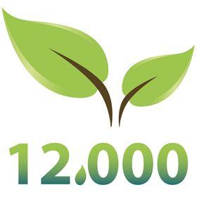 12,000 Rain Gardens