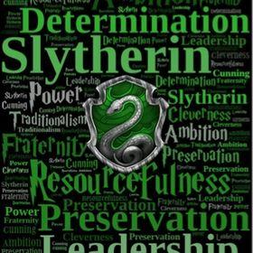 Slytherin homie