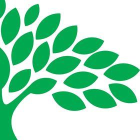 GreenSweep LLC