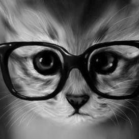 mayazen meow