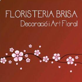 Floristería Brisa