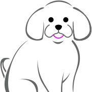 Little Pampered Dog