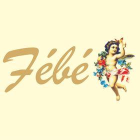 Febe Fabric Lace and Fashion