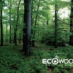 Oriental Eco Woods Limited